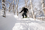 Boarders and skiers dodge the trees along the off-piste runs at  Hanazono ski ground in Niseko, northern Japan on Feb. 6 2010. Niseko is the only ski resort area in Japan where off-piste skiing can be legally enjoyed.