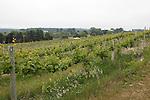Chateau Chantal Vineyards, Winery and Inn, Old Mission Peninsula, Lake Michigan, Traverse City area, Michigan, USA
