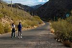 Runners in Sabino Canyon, Sabino Canyon Recreation Area, Coronado National Forest, Tucson, Arizona