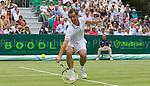 Richard Gasquet - Tennis