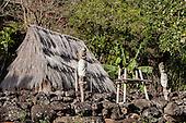 Sacred Hawai'i