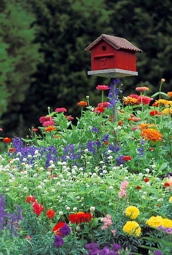 Red barn birdhouse or bird box in gaudy multicolored summer blooming garden