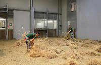 Zookeepers spreading hay in the indoor giraffe enclosure before bringing the giraffes in from their open outdoor area, at the new Parc Zoologique de Paris or Zoo de Vincennes, (Zoological Gardens of Paris or Vincennes Zoo), which reopened April 2014, part of the Musee National d'Histoire Naturelle (National Museum of Natural History), 12th arrondissement, Paris, France. Picture by Manuel Cohen