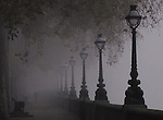 Chelsea Embankment in the Fog in Autumn