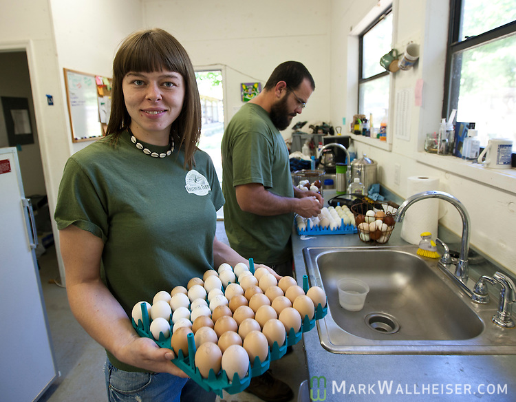 Greenfire Farm workers Satya Stark-Bejnar (L) and Jason Cusell work with some of the unique eggs at Greenfire Farms in Havana, FL March 26, 2012.