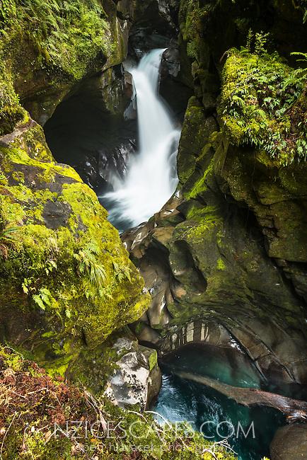 Chasm, rainforest creek running through rocky chasm, Fiordland National Park, Southland, World Heritage Area, New Zealand, NZ