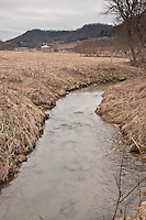 Spring Coulee creek a trout stream in the Driftless Area of southwestern Wisconsin.