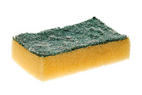 Scouring Pad - 2011