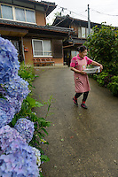 Farmer Yukiyo Nishkage taking an order of leaves to the agricultural cooperative, Kamikatsu, Katsuura, Tokushima Prefecture, Japan, July 7, 2014. The Irodori Project is based in the mountain town of Kamikatsu, Tokushima Prefecture. Farmers - many of them elderly - grow leaves and flowers to use to decorate Japanese food in restaurants and hotels across the nation.