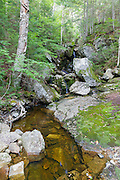 Fleming Flume on Elephant Head Brook in Carroll, New Hampshire during the summer months when the water level was very low.