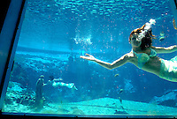 Mermaids put on a show for tourists at Weeki Wachee Springs, a longtime Florida tourist attraction.