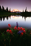 Mount Rainier, Mount Rainier National Park, Washington