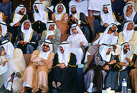 Audience watching anniversary parade, Abu Dhabi