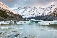 Pastel dawn at Hooker Lake with icebergs and Aoraki,Mount Cook in background, Aoraki, Mt. Cook National Park, Mackenzie Country, UNESCO World Heritage Area, South Island, New Zealand, NZ