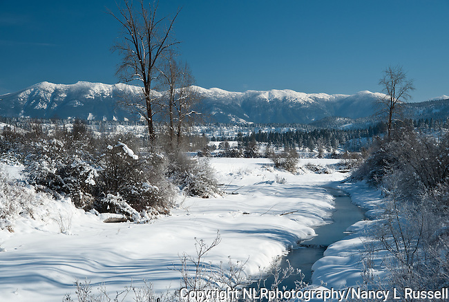 Winter day in north Idaho with snowcapped Purcell mountains in the background