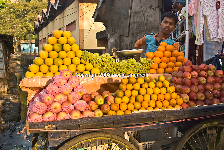 regional fruits in india High protein fruits in india: to day this article will guide you about the list of protein rich fruits along other benefits of that fruit which are easily available in india 1.