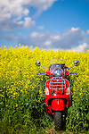 My Vespa Adventures Canola and BBQ Corn. Photo Credit: Sergei Belski