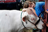 "Sarah Grant, 10, leans on her all-white steer Gabriel after cleaning him for competition. Grant raised the steer from a bottle calf after buying him from the Angell family.  ""He's so sweet,"" says Grant, ""He doesn't really care if I lay all over him."""