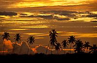 Parguera Sunrise<br /> Puerto Rico