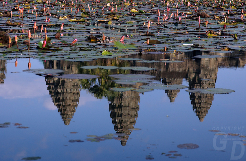 Images from the Book Journey Through Colour and Time Ankor Wat relection and Lotus Flowers