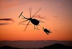 Helicopter hunting. Fiordland National Park. New Zealand.