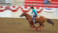 Barrel Racers