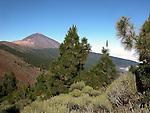 Mount Teide,National park Las Cañadas, Tenerife, Canary Islands, Spain