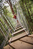 Walking between platforms while Ziplining on the Big island with Kohala zipline