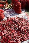 chilis being dried at Hungary's paprika capital - Kalacsa, Hungary.