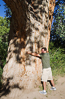man hugging a very large tree