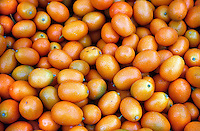 FOOD GROUPS: FRUIT<br /> Kumquats