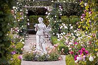 Napa Rose Garden