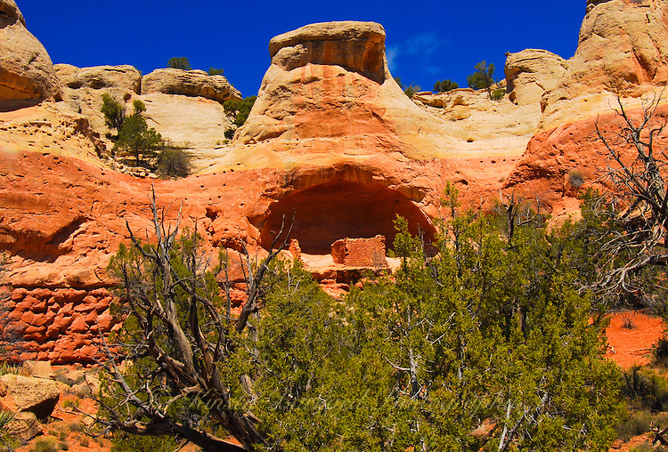 Canyons of the Ancients
