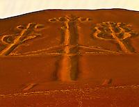 Desert Geoglyph Paracas National Preserve, Peru 500 foot figure along Pacific Ocean Paracus Culture (200BC-100AD) Called the Candelabra or Cactus