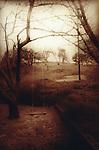 empty swing in rural setting