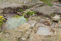 SAVEOCK WATER, CORNWALL, ENGLAND - AUGUST 02: A general view of Neolithic spring and winter pools on August 2, 2008 in Saveock Water, Cornwall, England. Excavated by archaeologist Jacqui Wood and her team. (Photo by Manuel Cohen)
