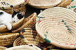 A cat asleep in baskets for sale at the market, Morocco