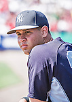 11 March 2014: New York Yankees catcher Gary Sanchez in the dugout during a Spring Training game against the Washington Nationals at Space Coast Stadium in Viera, Florida. The Nationals defeated the Yankees 3-2 in Grapefruit League play. Mandatory Credit: Ed Wolfstein Photo *** RAW (NEF) Image File Available ***