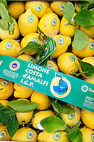 IGP lemons being packed for shipment at the Costieragumi De Riso, part of the Consorzio di Tutela Limone Costa d' Amalfi IGP, Maiori, Amalfi Coast, Italy
