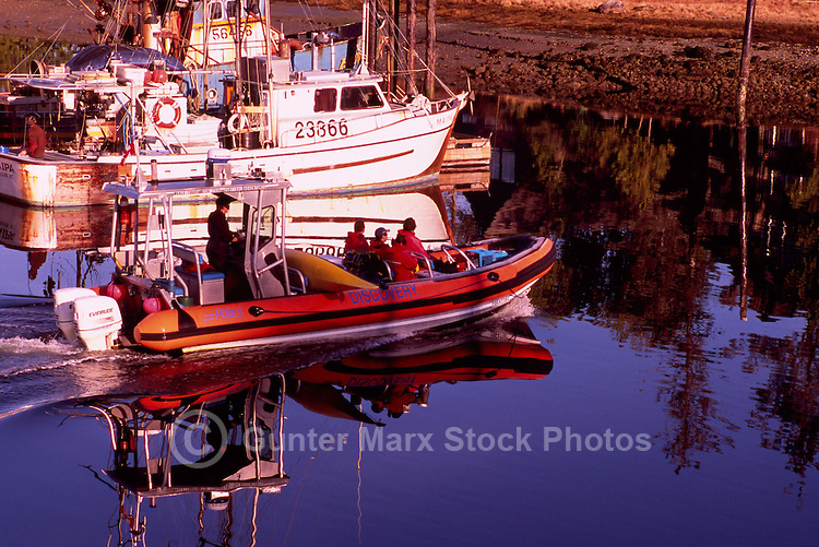 Tourists sightseeing onboard a Zodiac Boat leaving the Marina at Ucluelet Harbour, Ucluelet, Vancouver Island, British Columbia, Canada