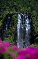 Opaekaa falls w/ bouganvilla flowers, Kauai