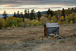 Idaho, Eastern, Driggs. An old barn in the foothills of the Bighole Mountains in autumn.