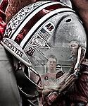 Ohio State University Fans merged with Beanie Wells Helmet