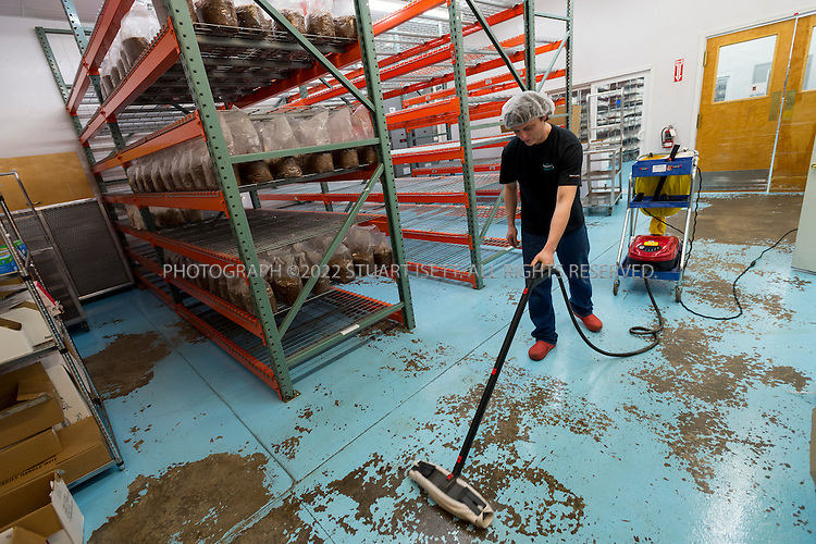 3/22/2013--Shelton, WA, USA..Juston Tulloss, an employee at Fungi Perfecti, steam cleans the floor in the production facilities at the mushroom farm in Shelton, WASH., south of Seattle...Paul Stamets, 57, is an American mycologist, author, and advocate of bioremediation and medicinal mushrooms and owner of Fungi Perfecti, a family run business that specializes in making gourmet and medicinal mushrooms...©2013 Stuart Isett. All rights reserved.
