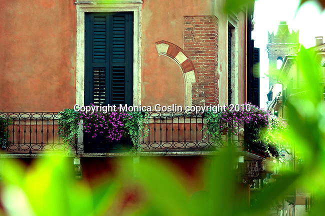 A balcony with purple flowers, a window with shudders, and an iron railing of a pink house in Verona, Italy.