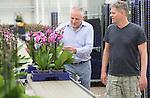 Foto: VidiPhoto<br /> <br /> BEMMEL - Phalaenopsiskwekerij (orchidee&euml;n) De Molenhoek in het kassengebied Bergerden bij het Gelderse Bemmel. Horticoop heeft Plant-Prod Reci ontwikkeld om vervuiling van het watergeefsysteem te voorkomen.