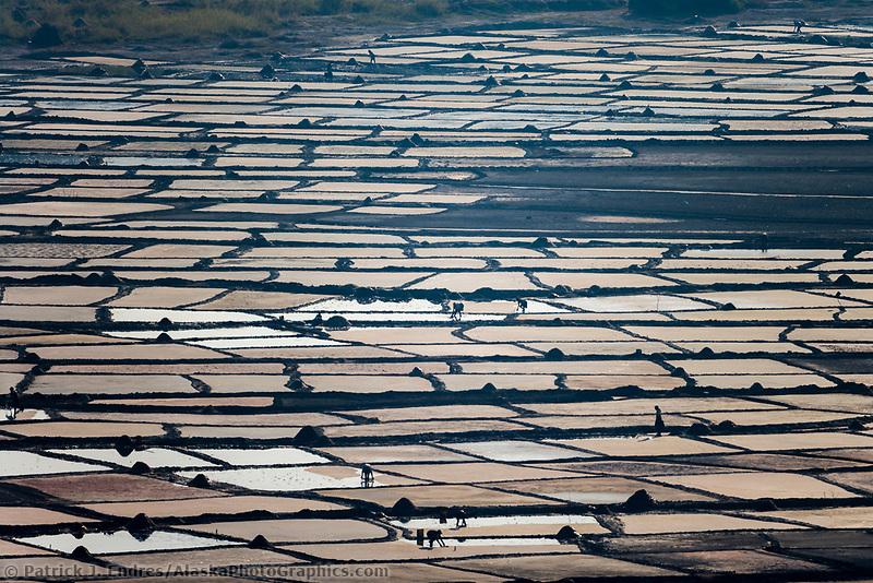 Havesting salt, Uganda, Africa