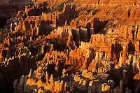 730750019 sunrise highlights the hoodoos including thor's hammer below sunset point in bryce canyon national park utah united states