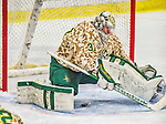 25 November 2014: University of Vermont Catamount Goaltender Brody Hoffman, a Junior from Wilkie, Saskatchewan, gives up a goal during the third period against the University of Massachusetts Minutemen at Gutterson Fieldhouse in Burlington, Vermont. The Cats defeated the Minutemen 3-1 to sweep the 2-game, home-and-away Hockey East Series. The 12th ranked Catamounts wore their camouflage uniforms for the evening to honor the US military. Mandatory Credit: Ed Wolfstein Photo *** RAW (NEF) Image File Available ***