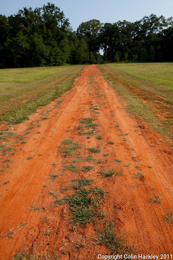 MICCOSUKEE GREENWAY: Red clay divides the grass from the trailhead..COLIN HACKLEY PHOTO